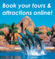 Book Toors and Attractions Online